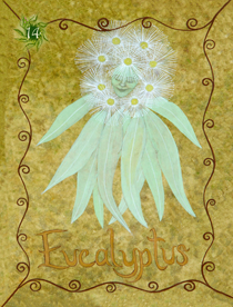 13 Eucalyptus Card Copy