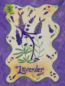 22 Lavender Card Copy