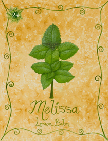 23 Melissa Card Copy