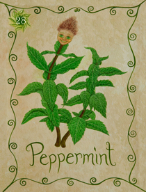 27 Pepermint Card Copy