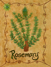 32 Rosemary Card Copy