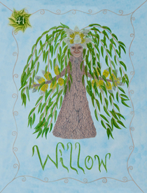41 Willow Card Copy